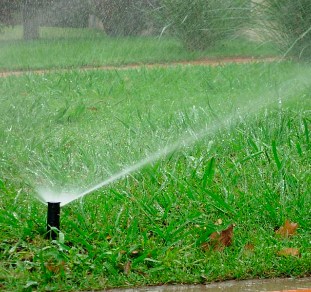 limpieza de jardines y poda en burgos