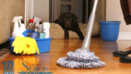limpieza de pisos en burgos a buenos precios