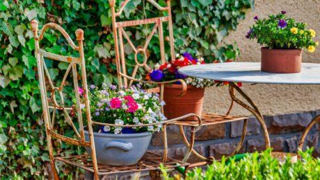 Mantenimiento de jardines en Burgos